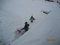 Bob and Simon digging out