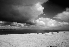 Beach (Bart van Dijk (...)) Tags: sky bw beach netherlands amsterdam clouds strand blackwhite sand zwartwit pipes nederland wolken benches ijsselmeer ijburg blijburg zand zw bankjes buitenij pijpleidingen