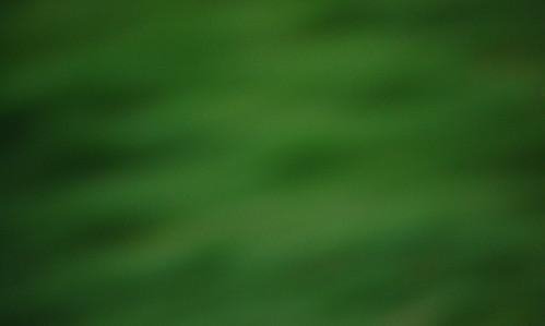 greenblur