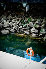 how to save a life.. (lifethroughhereyes) Tags: vancouver coalharbour lightroom