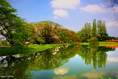 Lake Garden Edited (isaaclsy) Tags: sky lake reflection tree clouds a200 taiping lakegarden sony1870mmf3556 sognidreams platinumpeaceaward