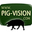 The lives of the Pig Vision pigs   a review