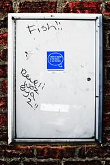 I Want Never Gets (Your Funny Uncle) Tags: york england graffiti sticker yorkshire eu oktoberfest pegatina ue autocollant heslington dyxum oneprime