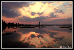 No Man's Land (SisPau Images) Tags: trees sunset sun lake reflection nature water clouds sunrise canon outdoors photography eos dawn landscapes flickr photographer images professional cypress caddo sunbeams 2007 caddolake instantfave 1dmk2n outstandingshots paulkeith aplusphoto naturewatcher excapture allphotographyandcontentarecopyrightpaulkeith sispau
