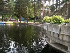 IMG_2106_DCE (TBiljana) Tags: flowers lake landscape hills zlatibor