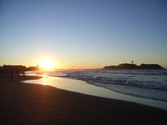 江の島西海岸 (21)