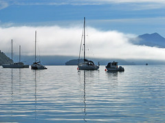 morning in picton (darkroom344) Tags: ocean sea newzealand mist mountain reflection water mirror boat yacht ripple sound picton travelphotography platinumphoto