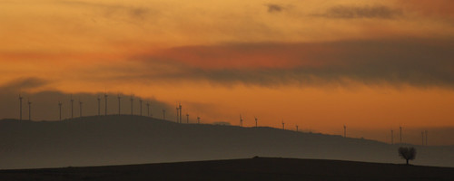 Windfarm_Spain