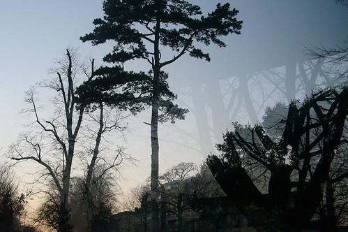 Kirsty Hall: Photograph of trees reflected in a bus stop during a clear winter sunset