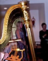 The Harp (moedonno) Tags: bill harp rizzo
