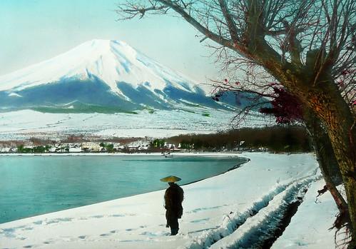 MT. FUJI, TREE, MAN AND SNOW -- Morning Light on the Winter Shores of Lake Yamanaka