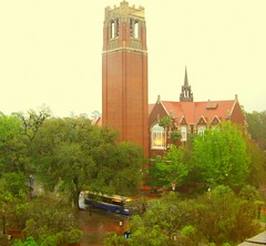 Wet Day Golden Glow (gatorgalpics) Tags: universityofflorida fl gainesvillefl wetday centurytower universityauditorium 5photosaday almostspringbreak fromthe5thfloormarstonsciencelibrary