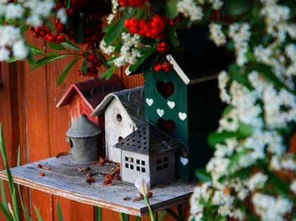 bird houses in springtime