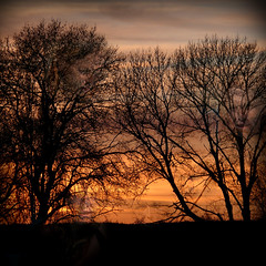 having fun with sunset :) (Tangent~Artifact, here sometimes :)) Tags: firstquality multimegashot alarecherchedutempperdu onlyfivetobeseenithink okseemstoughersinceireplacedthepicturetwoonthehorizonleftandrightofthemiddleleftoneisbehindafewbranchestwointopofthetreesleftandrightoneinthebottomrightquarterinthecloudsbutpartiallyhiddenanddrawnb drawnbyafewbranchesmaybethisisthetrickyonenow fifthismyfavoritebecausewhenwehaveoureyessetonititsreallytherebutitcaneasilyfadebackintothecloudsevenwhenweknowwhereitis