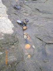 smooth rocks4