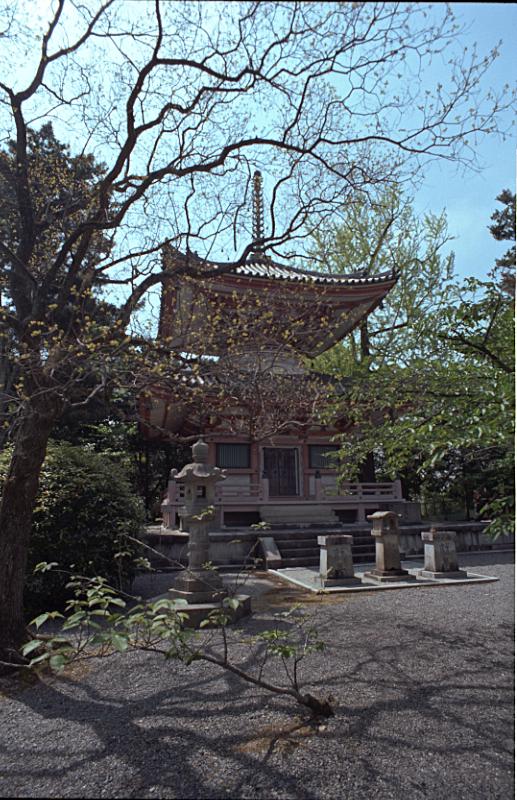 大阪、京都 (四) - 知恩院, 八阪神社, 地主神社, 清水寺