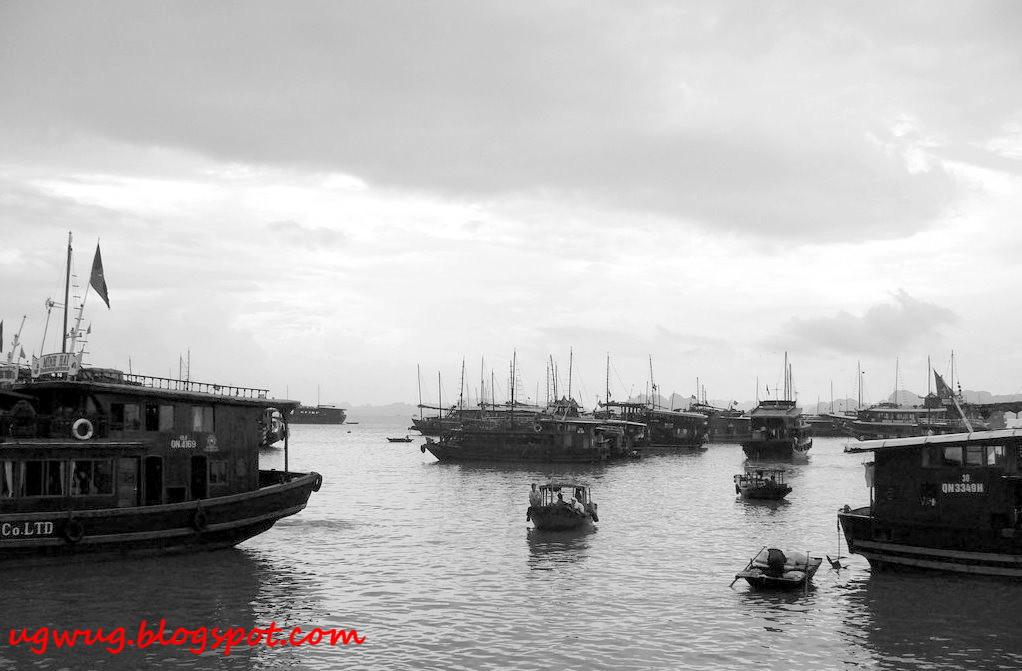 Halong Bay 5