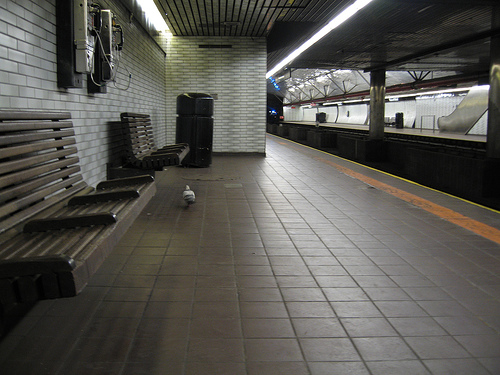 Subway pigeon_da mad pixelist