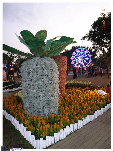 大安森林公園花展 054