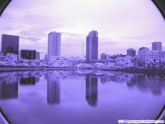Infrared Sunrise over Marina Bay - fDSC07826 (genotypewriter) Tags: city bridge bw clouds marina sunrise ir bay sony infrared hoya schneider kreuznach h9 093 r72 720nm 830nm fpro h9ir