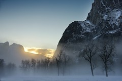 WS Yosemite Sunset.jpg (YOSEMITEDONN) Tags: trees sunset snow yosemite goldstaraward
