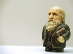 Darwin (mstori) Tags: nyc newyork museum darwin evolution exhibit charlesdarwin souvenir amnh figurine americanmuseumofnaturalhistory darwinday february12th mstori ontheoriginofspecies february12th1809