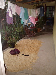 My House 2 (MissKW) Tags: honduras