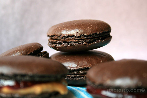 Chocolate Macaron recipe, except I didn't double the sugar added to the