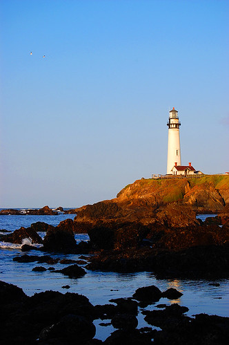 Pigeon Point Lighthouse in the Morning Light