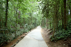 Cayce River Walk