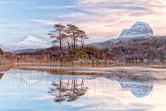 Loch Druin Suardalain 13.01 (Paul Cronin 1) Tags: landscape sunset highlands leefilter snow loch assynt reeds scotland sutherland canon5ds lochsuardalain canisp trees suilven lochdruimsuardalain lochinver winter ngc