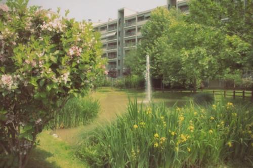 Bovisa 90 - La Casa Ecologica