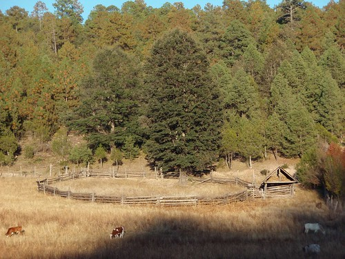 Corralito - Small corral; Basaseachic, Sierra Tarahumara, Chihuahua, Mexico