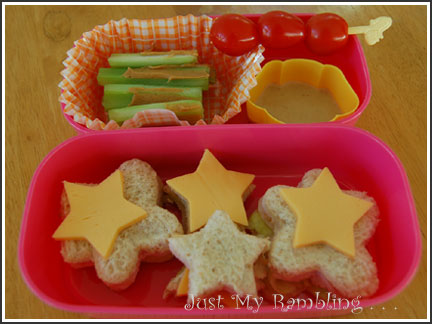 Bento #1 - A Starry Day