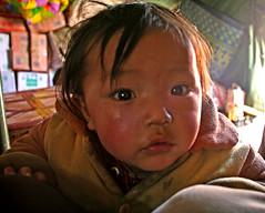 A little Curious (Ingiro) Tags: boy children kid tibet tibetan curious himalaya kailash kora ingiro sagadawa