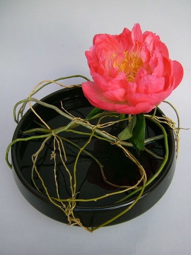 Ikebana with peonies