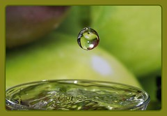 Apple / Alma (butacska) Tags: macro reflection green apple water closeup photo droplets drops waterdrop alma sony drop drip photograph droplet liquid highspeed waterdroplet zld fotzs makr tkrzds csepp vzcsepp vz sonyalpha kzelkp