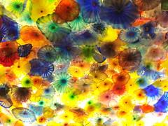 glass ceiling (florajasmine) Tags: lasvegas feb2008 florajasmine