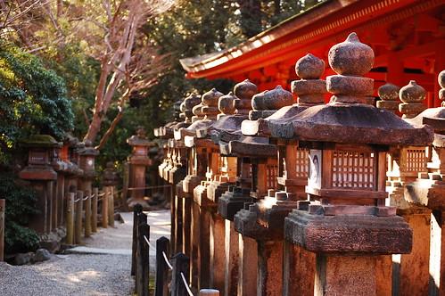 Kasuga Taisha lamps