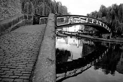 Crossing (mgratzer) Tags: bridge blackandwhite bw white black bird london river showonmysite