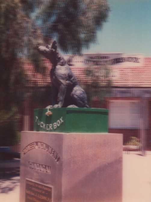 3D Dog on the Tuckerbox