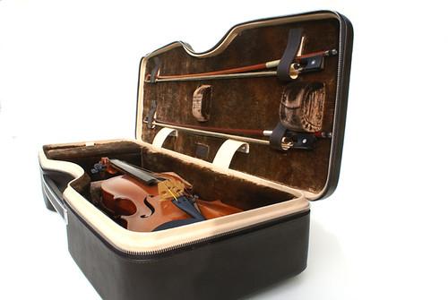 W N violin uplength .jpg