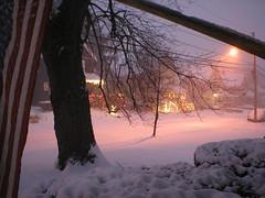 Laurel St Snow
