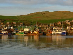 Campbeltwon Harbour (howbeg) Tags: sunlight island scotland argyll ixus campbeltown davaar