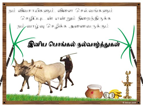 Jeevans world pongal greetings pongal 08 02 m4hsunfo