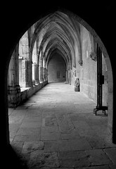 Cloisters of St Nazaire (Annie in Beziers) Tags: fab bw france monochrome spectacular cathedral stonework columns entrance feria arches middleages cloisters flamenco cathars smrgsbord stnazaire flagstones cloitre 1209 summerconcerts bziers splendiferous underneaththearches thebiggestgroup lesud theunforgettablepictures annieinbziers builtonromanruins