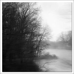 Thick Paint (kidrdaso) Tags: trees winter blackandwhite bw mist tree fog square 50mm flood atmosphere blurred viewfromthepassengerseat kimberlysink interstatei70 bareofleaves