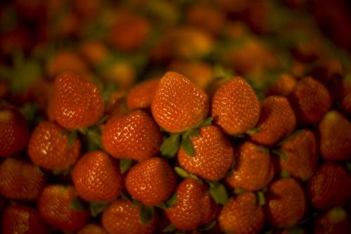 E' maggio, il tempo delle fragole