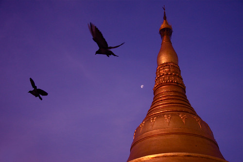Sunrise At The Shwedagon, Burma