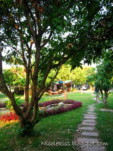 chiang mai home garden